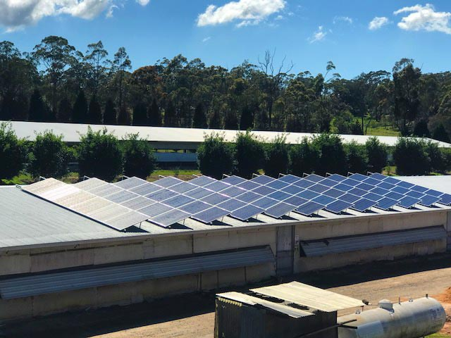 100KW. NSW. Poultry Farm